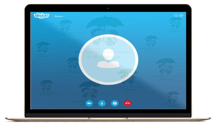 grafika z laptopem konsultacje online - skype